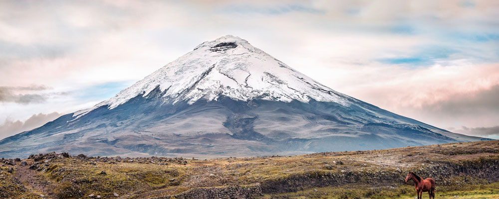 voyage-en-Equateur-entre-seniors-actifs-ou-retraites