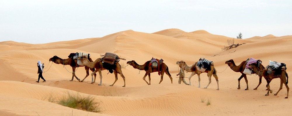 voyage-en-tunisie-entre-seniors-actifs-ou-retraites